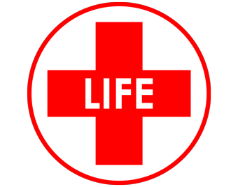 life solutions group logo